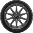"Performance Rad 17"" leichtes Schmiederad, Winter-Komplettrad mit Ford Performance Logo, 10-Speichen-Design, Magnetite Matt"